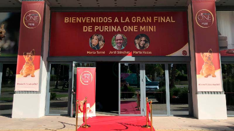 Teatro Goya Espacio para eventos madrid Purina One Mini Challenge-9