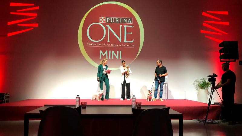 Teatro Goya Espacio para eventos madrid Purina One Mini Challenge